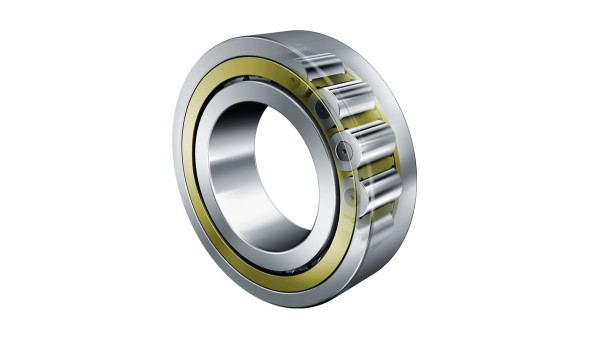 FAG cylindrical roller bearings with cages in the new TB design